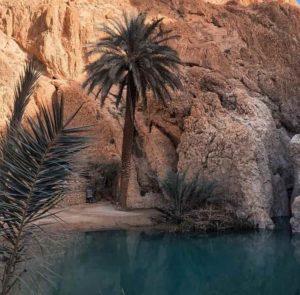 Chebika Tunisie