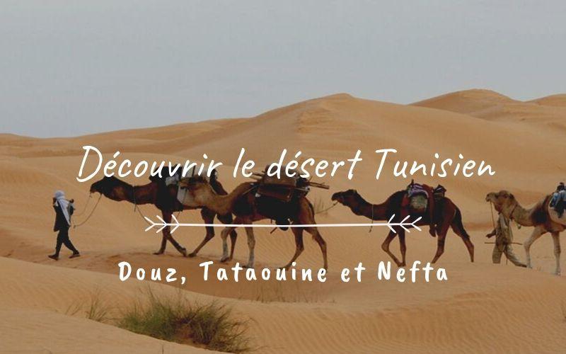 Douz, Tataouine et Nefta